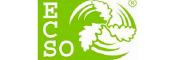 Логотип ECSO